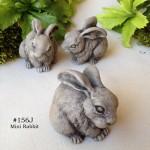 Mini Rabbit-001