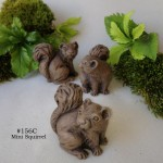 Mini Squirrel 2-001
