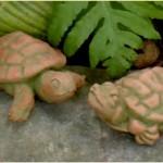 """#129 River Turtle, 2 1/2"""" H x 5 3/4"""" L x 3 3/4"""" W (1 lb), #125 Ruthie Turtle, 2 1/4"""" H x 5 1/4"""" L x 3 1/2"""" W (1 lb.)"""